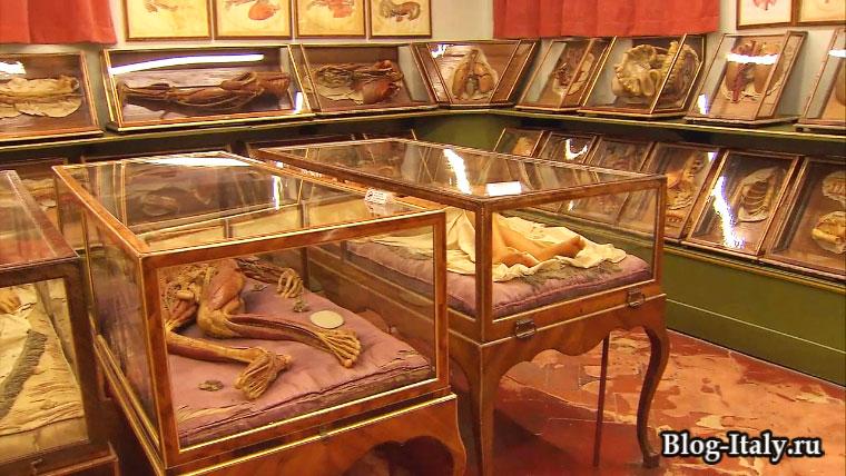 Музей Ла Спекола