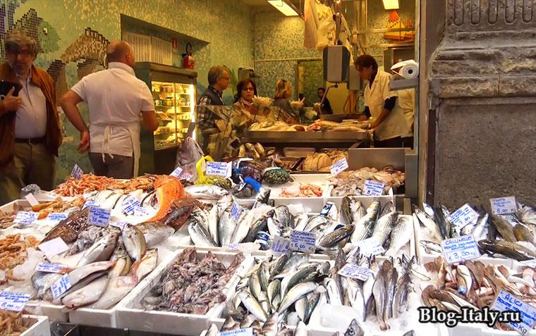 Рыбная лавка в Болонье