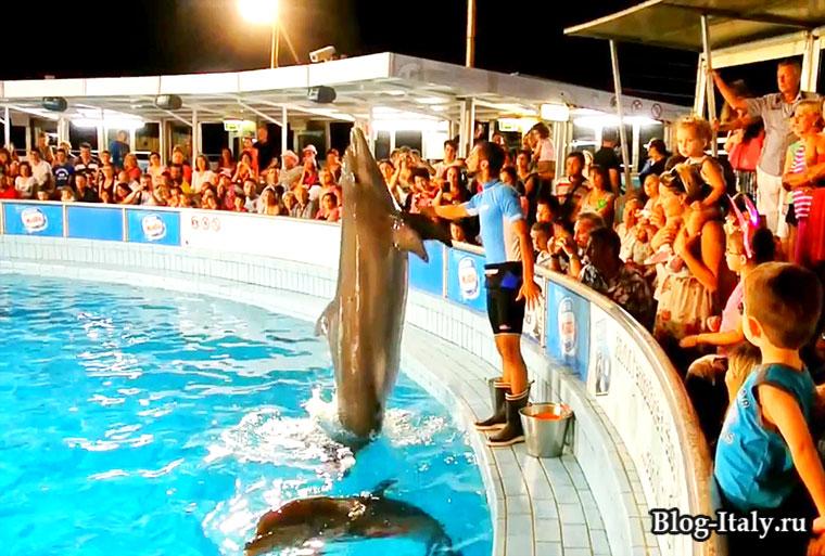 Дельфинарий Римини