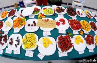 Фестиваль острого перца в Диаменте